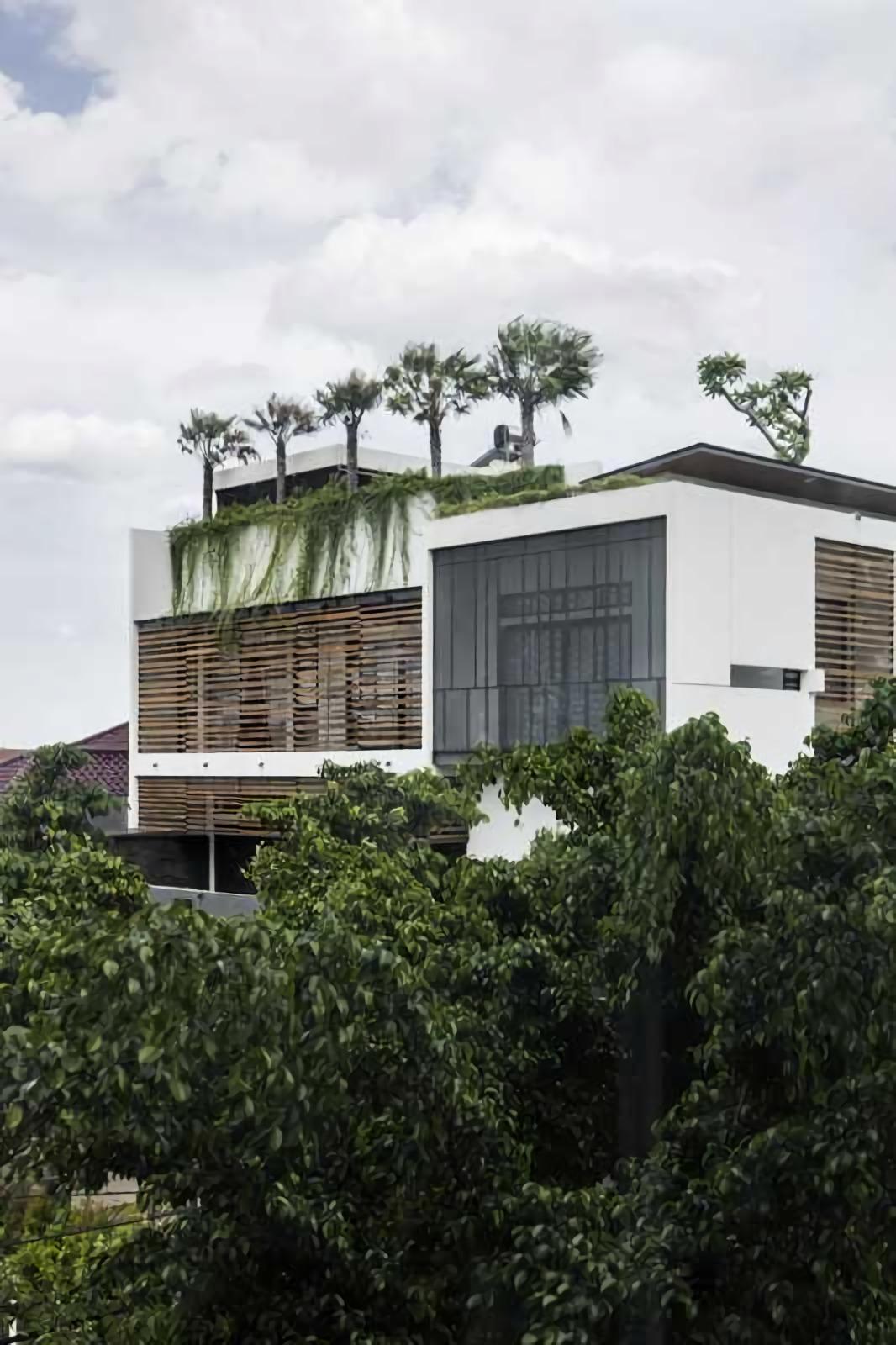 Taman di atap tidak hanya menghadirkan kesejukan dari oksigen yang dihasilkan dan keindahan dari hijaunya dedaunan, namun juga menjadi ciri khas arsitektur rumah tropis minimalis yang unik, elegan, dan bisa menjadi ikon di tengah keorisinilan ide dalam menyikapi lingkungan tropis.