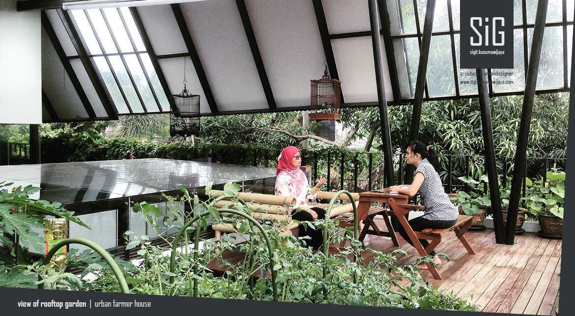 Rumah Kebun Mandiri Pangan (Food Self-Sufficiency House)