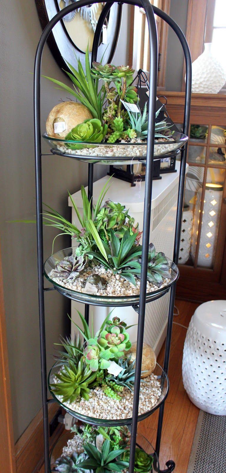 Taman Mini Succulent