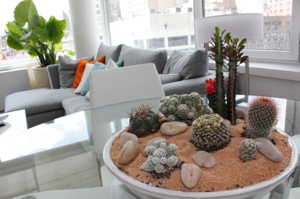 Popularitas tanaman Succulent sedang naik beberapa tahun belakangan ini. Berbagai jenis tanaman Succulent yang diatur dan ditata dalam bentuk taman mini bertingkat seperti ini pastinya akan menambah keindahan ruangan dalam seketika.