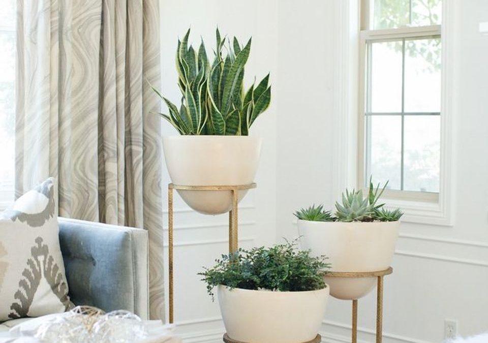 Plant stands dengan bentuk pot yang cantik (Sumber: ecotek.com)