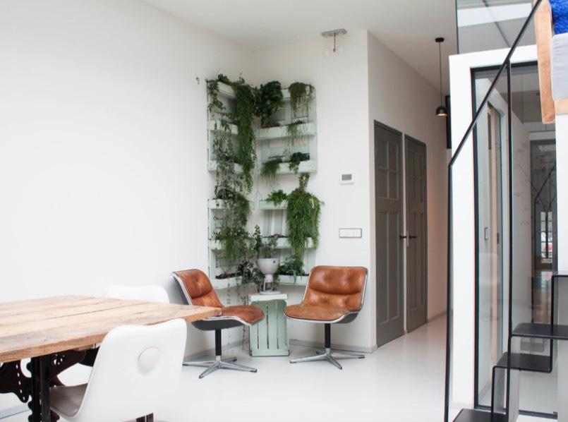 Tanaman hijau yang ditata secara rapi di sudut ruangan (Sumber: 30smagazine.com)