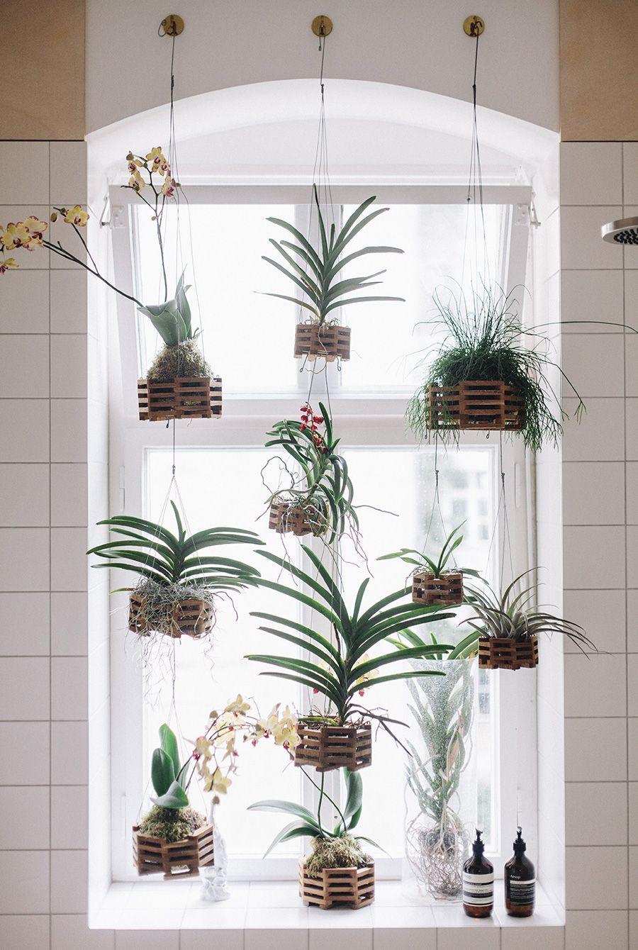 Manfaatkan ruang kecil di sisi jendela untuk menggantung berbagai jenis tanaman untuk membuat suasana terlihat lebih segar. Area di sisi jendela seperti ini dijamin akan mendapatkan asupan sinar matahari yang dibutuhkan oleh tanaman Anda.