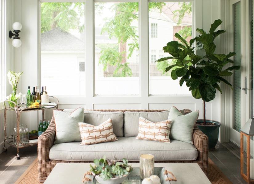 Pot dan tanaman berukuran super besar dalam ruangan (Sumber: forestavenuedesign.com)