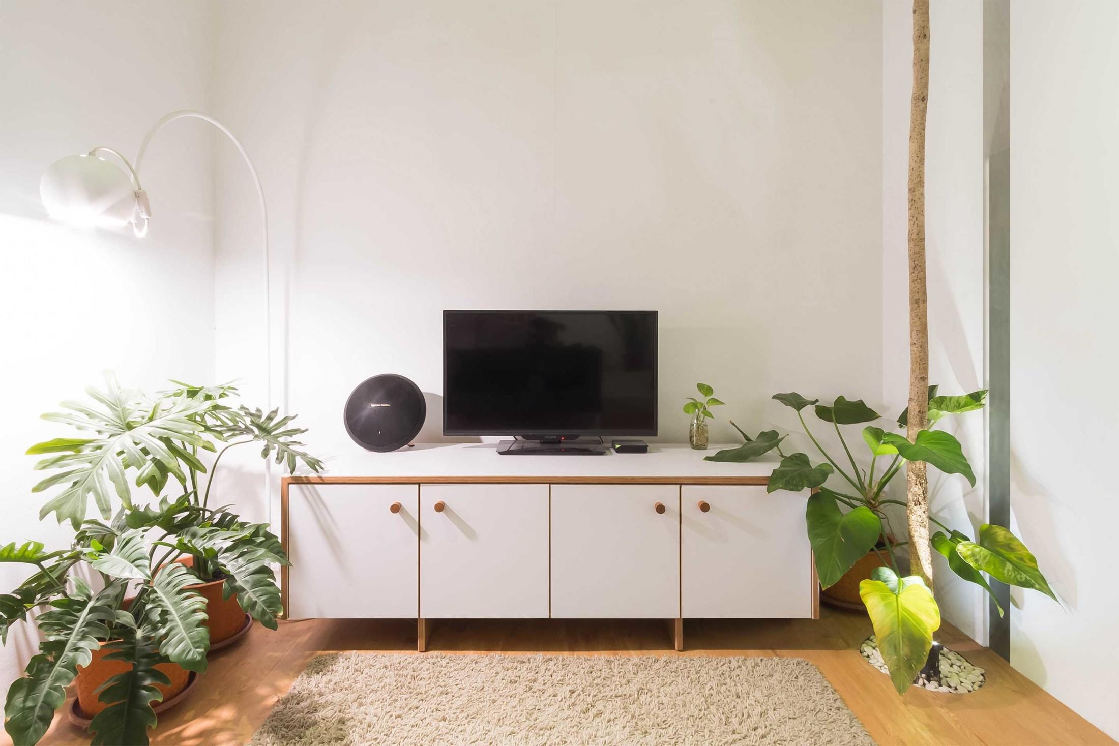 Tanaman unik untuk pelengkap desain interior yang apik (Sumber: arsitag.com)
