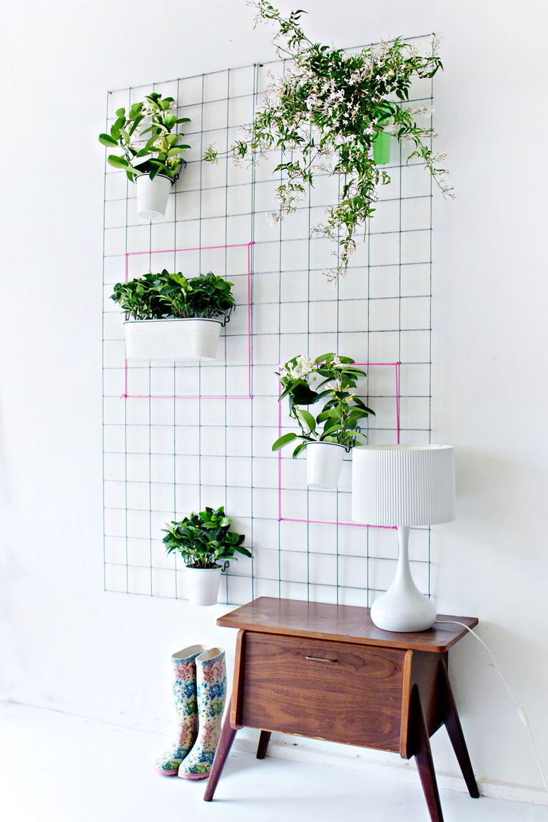 DIY Wallplanter