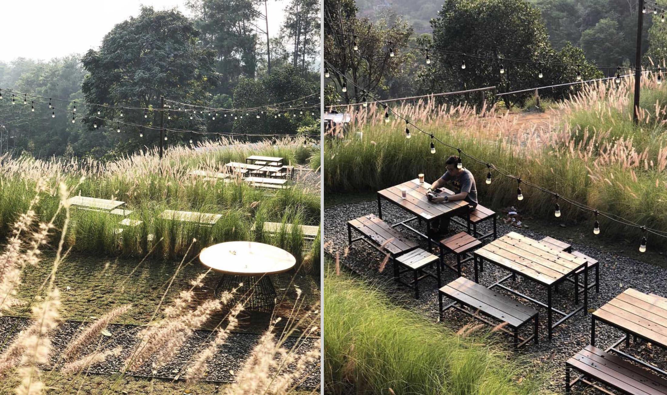 Kafe dengan keindahan ilalang, Utara Café Karya Wandi Uwa Krisdian (Sumber: arsitag.com)