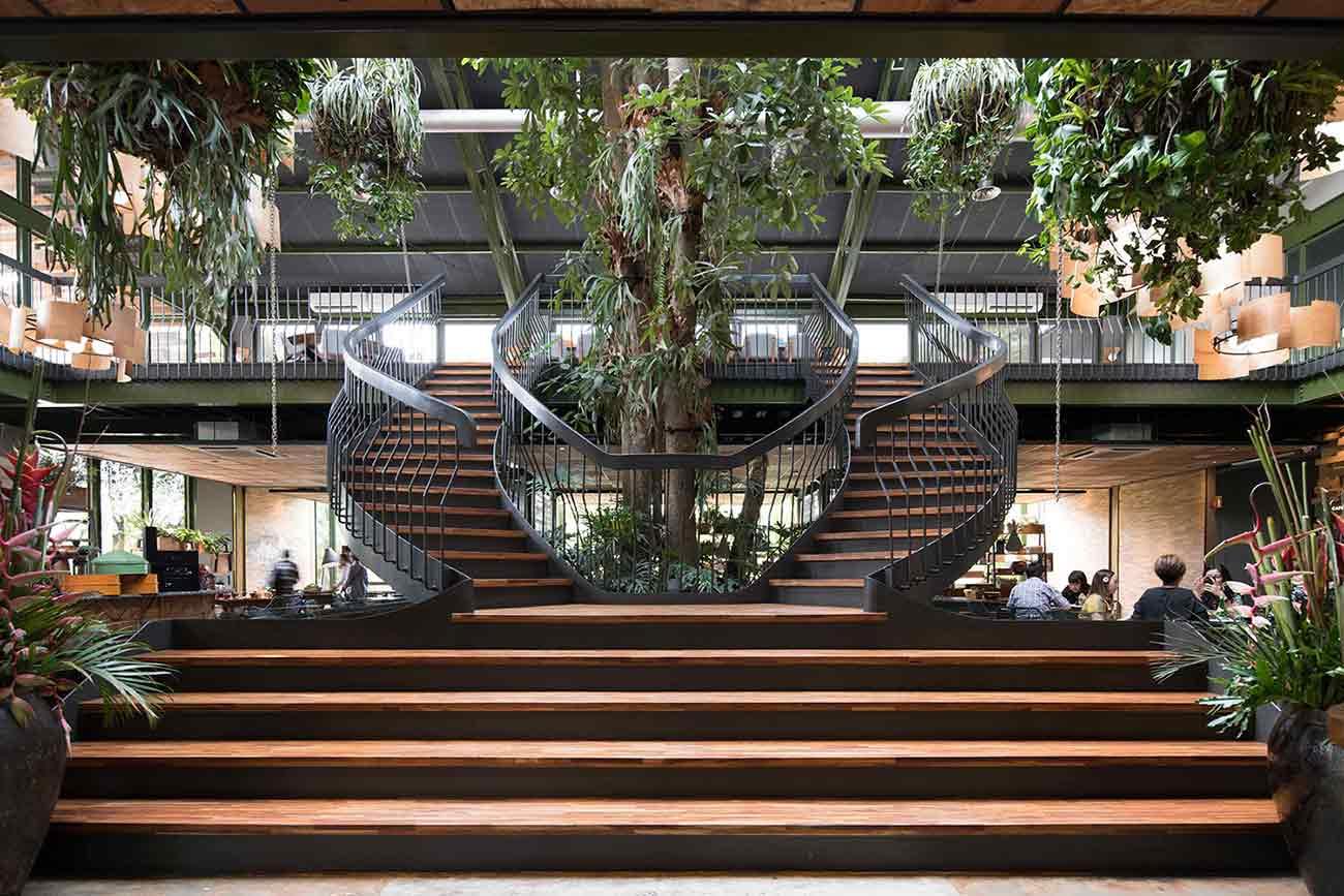 Pohon indoor besar membuat tampilan makin megah, Restoran Kayu Kayu karya W Office (Sumber: arsitag.com)