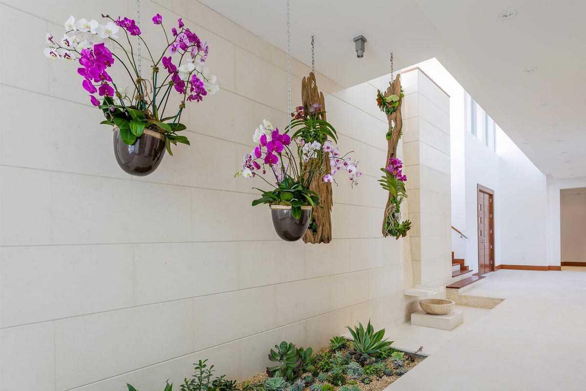 Desain tanaman gantung bunga anggrek karya LandStudio // houzz.com