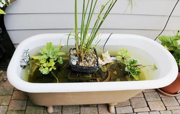 Kolam ikan buatan sendiri dari bekas bathtub // empressofdirt.com
