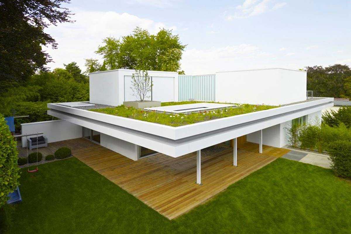 Atap hijau minimalis karya Christ Christ // dezeen.com