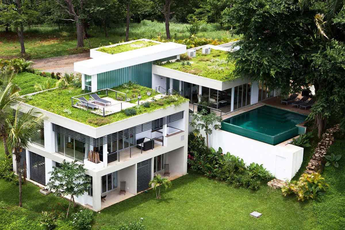 Atap hijau menyediakan arena relaksasi di rumah, karya Kalia // caandesign.com