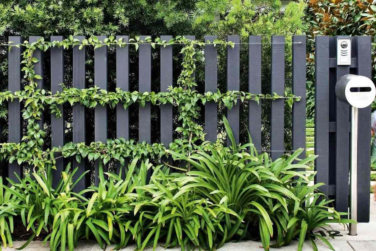 Ide Desain Pagar Taman Minimalis Keren untuk Halaman Rumah Anda | Foto artikel Arsitag