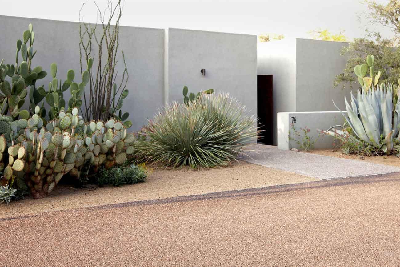 Taman kaktus karya Steve Martino // gardenista.com