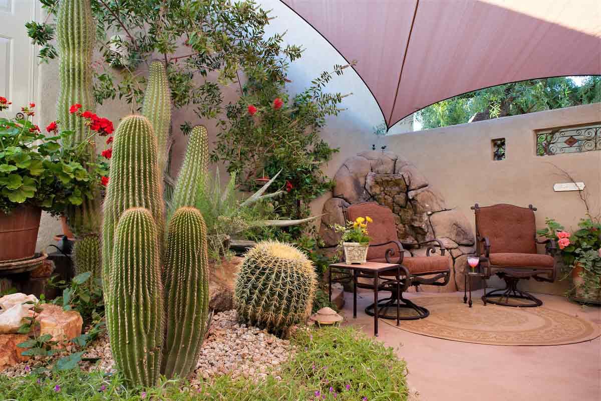 Taman kaktus karya Richard Maark // dflaz.com