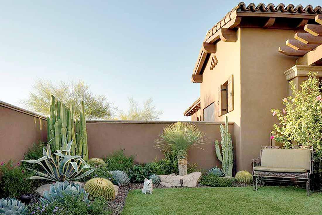 Taman kaktus karya Mark Lipczynski // phgmag.com