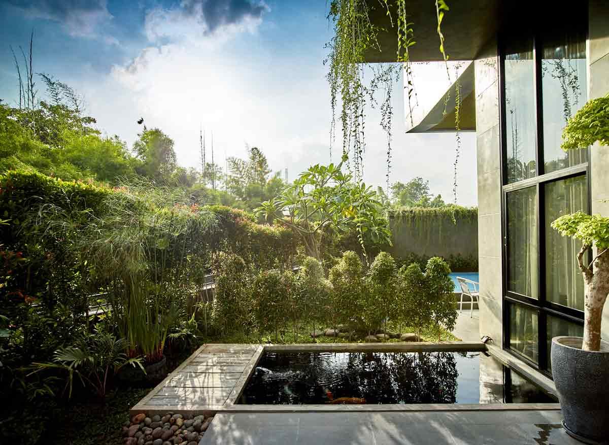 Taman tropis yang rimbun dan kolam ikan // Archdaily.com