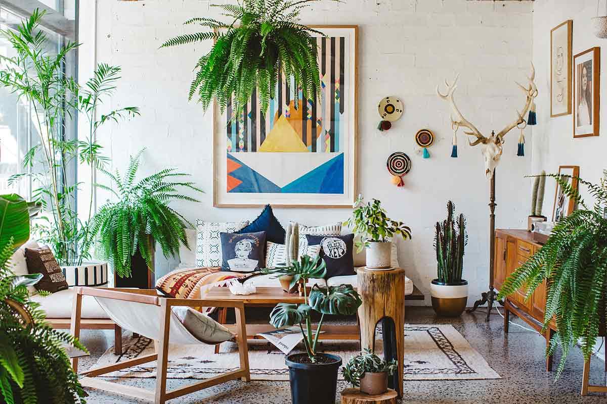 Dekorasi Tanaman Hias untuk Ruang Tamu yang Lebih Welcoming | Foto artikel Arsitag