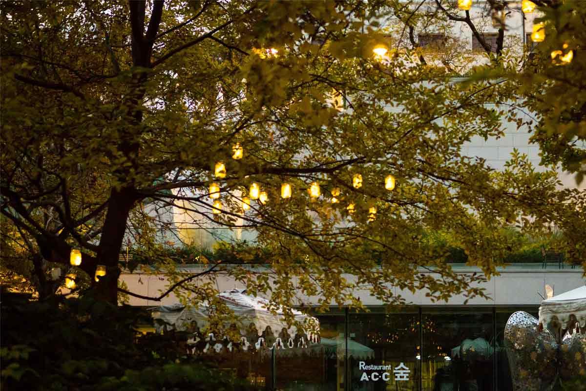 Lampu bersanding indah dengan ranting pohon, foto oleh Asia Culture Center, via unsplash.com