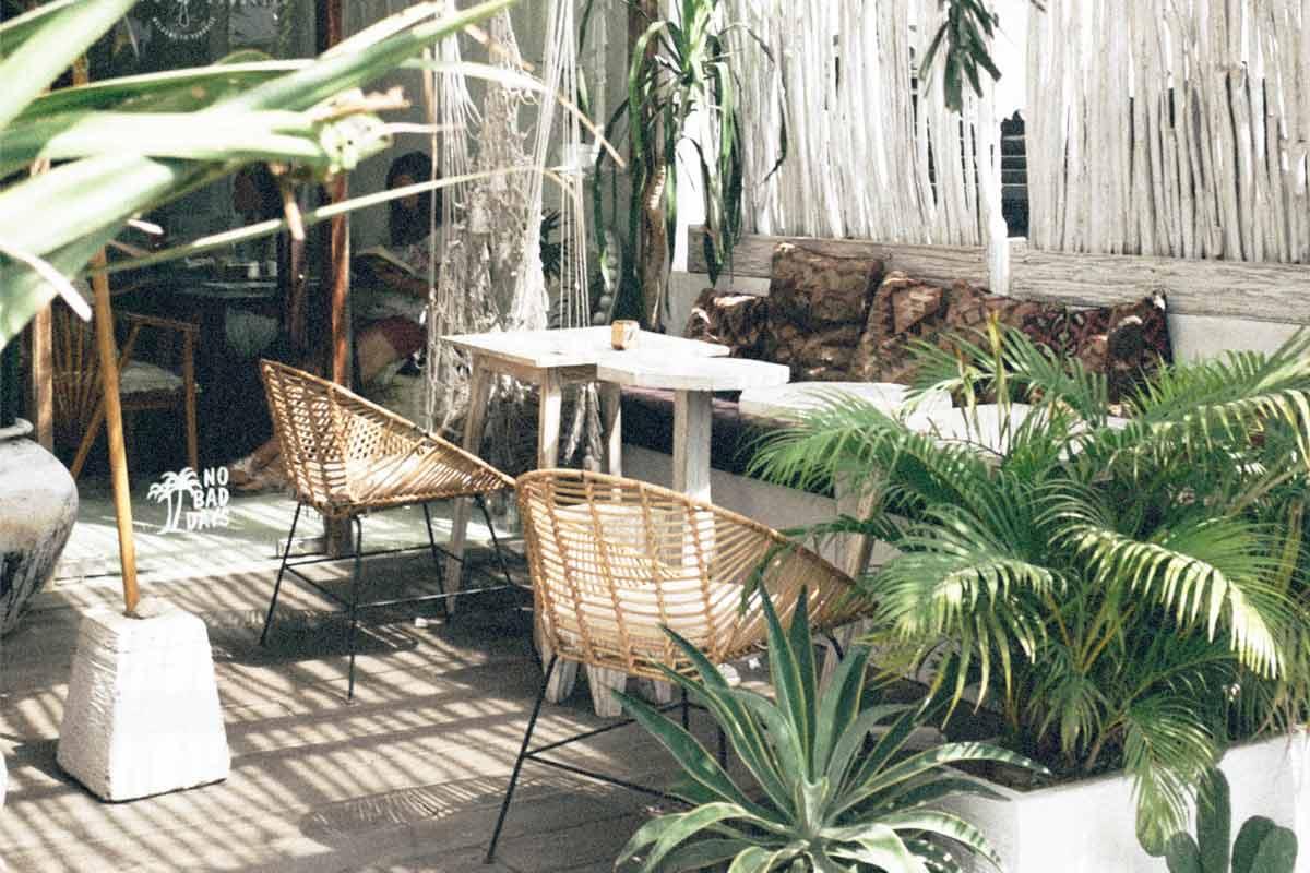 Berbagai tanaman untuk suasana tropical, foto oleh Sonnie Hiles, via unsplash.com